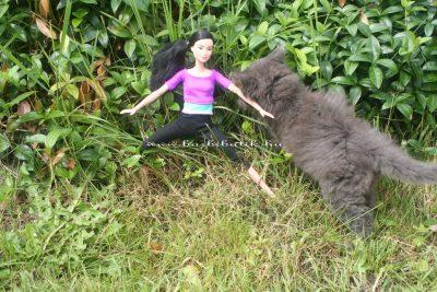 wellness Barbie baba